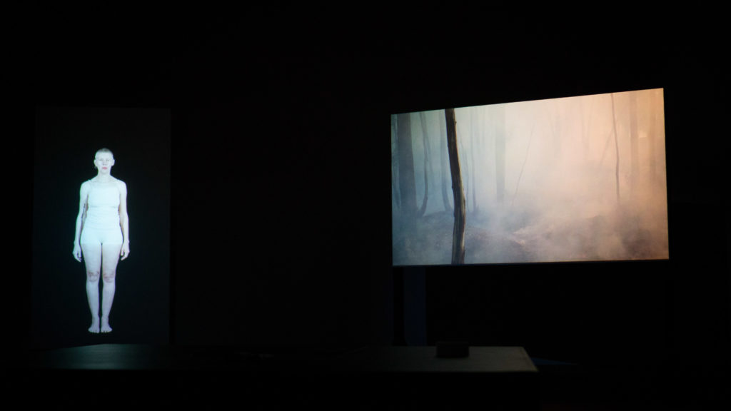 Installation view, RUPTURE, VIrginia Barratt, Linda Dement, Jessie Boylan, Bendigo Art Gallery, 2018
